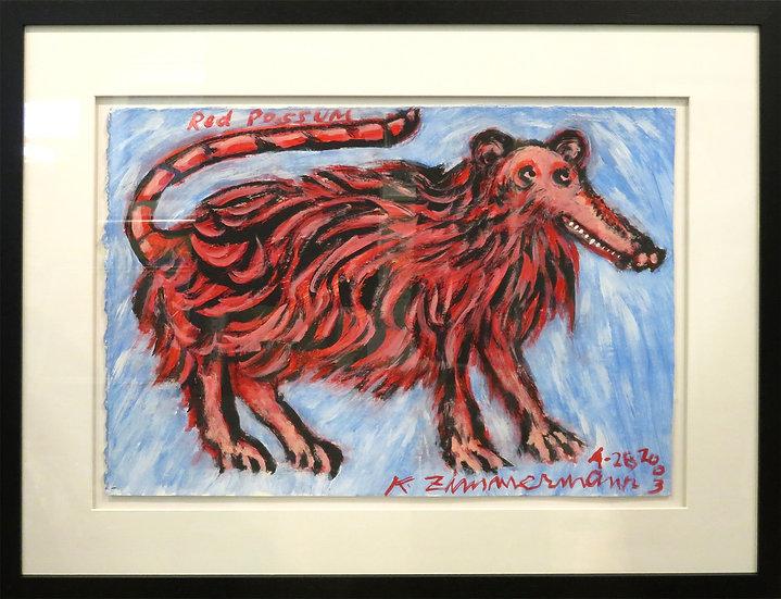 Red Possum by Kurt Zimmerman