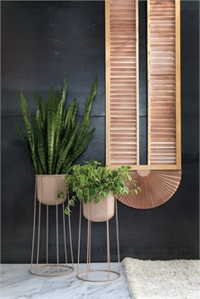 Celestial Plant Stand