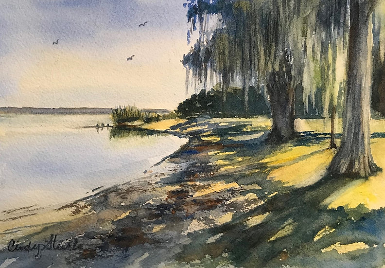 Morning Shadows on Lake Jessup by Cindy Sturla