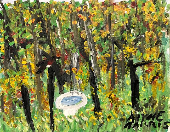 Birdbath in the Forrest by Alyne Harris