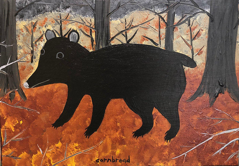 Black Bear by Cornbread