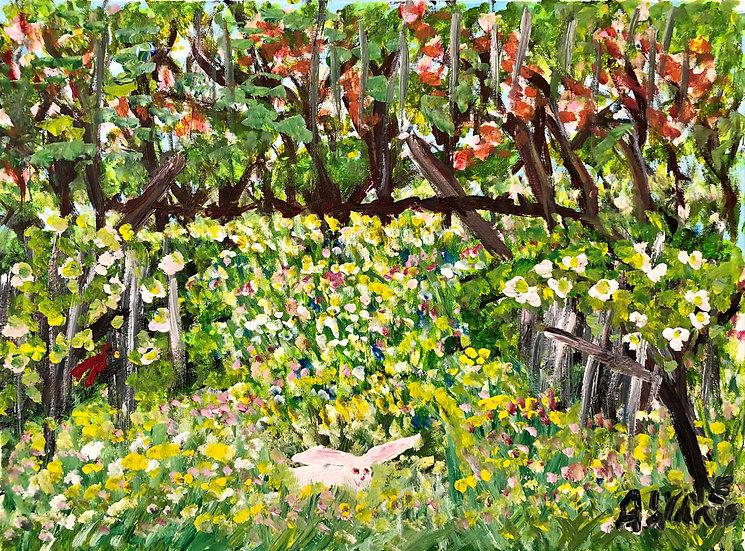 Bunny in a Field by Alyne Harris