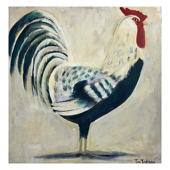 Rooster (B) by Tim Jordan