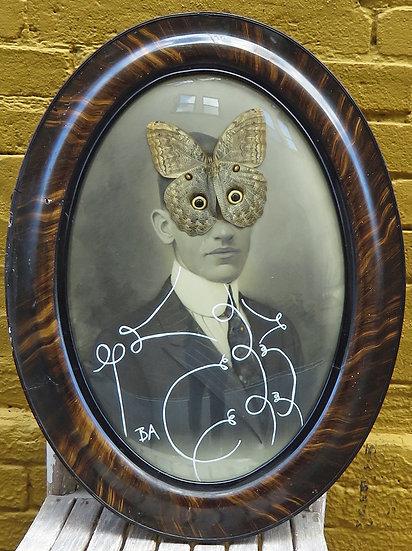 Owl Flutter Bye by Butch Anthony