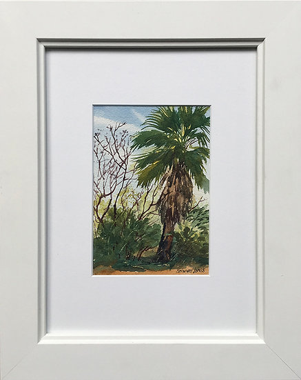 Breezy Palm by Stewart Jones