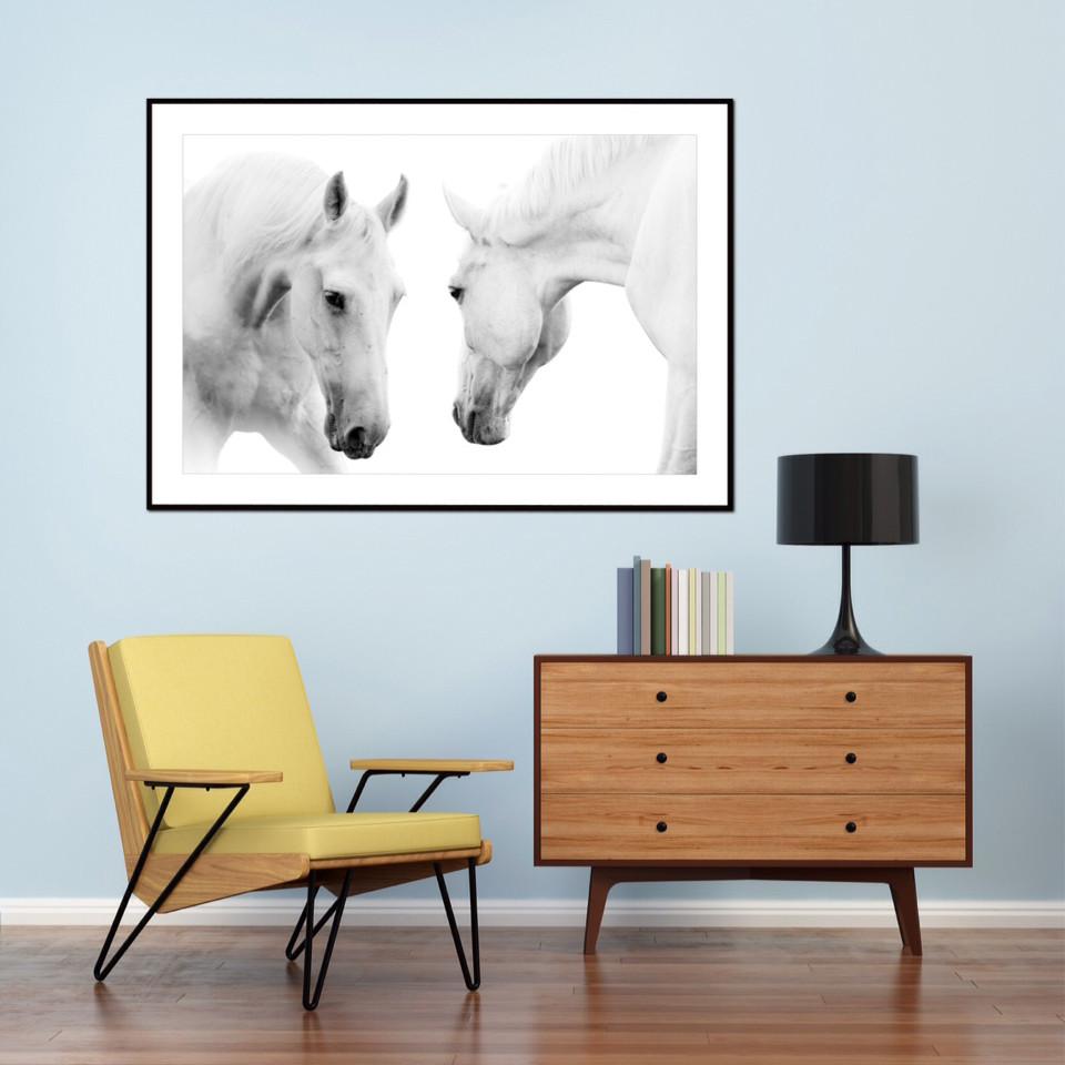 artscope art prints prints of animals