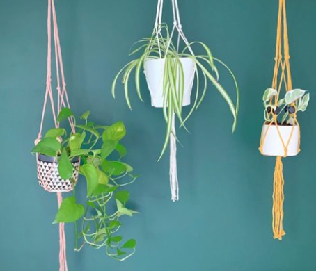 HOW TO MAKE A KNOTTED PLANT HANGER