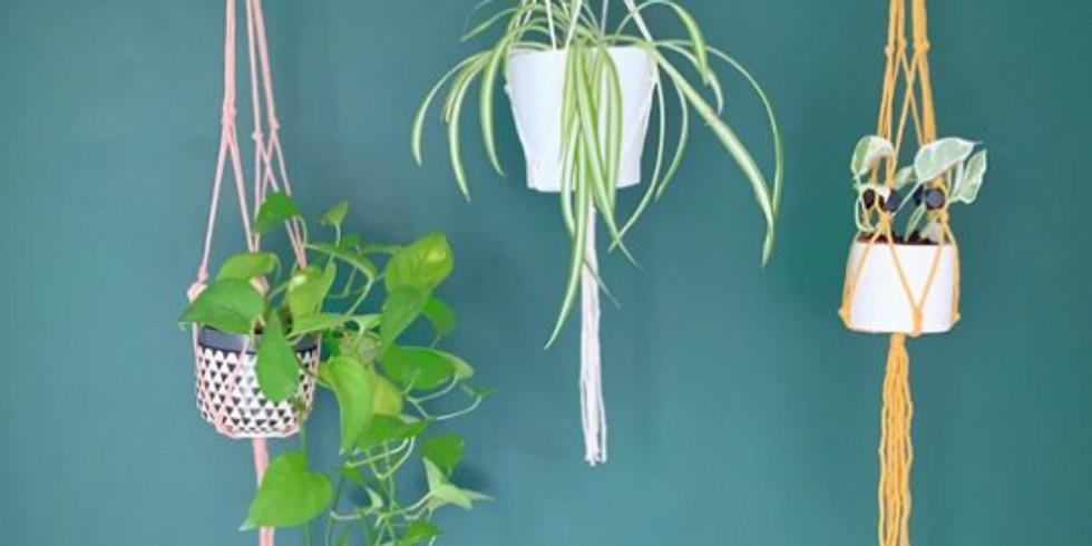 Macrame Plant Hanger - Live Workshop