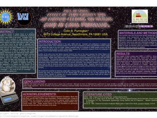 Poster Presentation Workshop