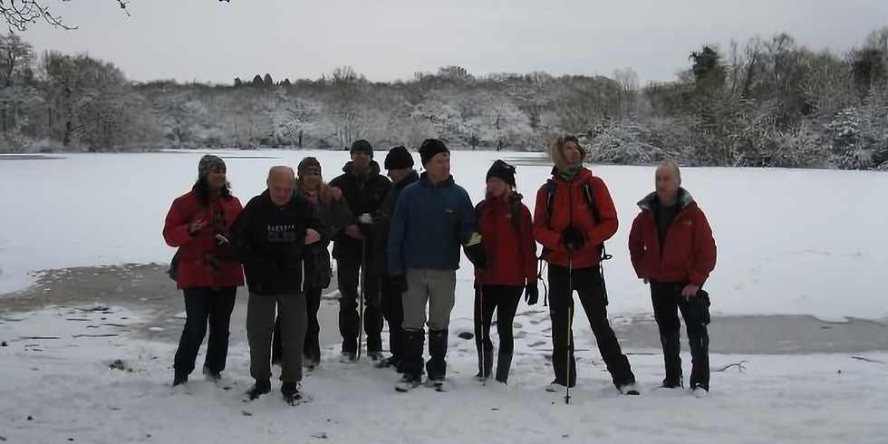 Local Walk: Epping Forest - January 2020