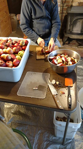 Cutting up apples to grind for apple cider.