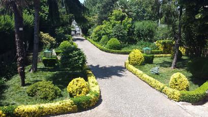 garden drive way