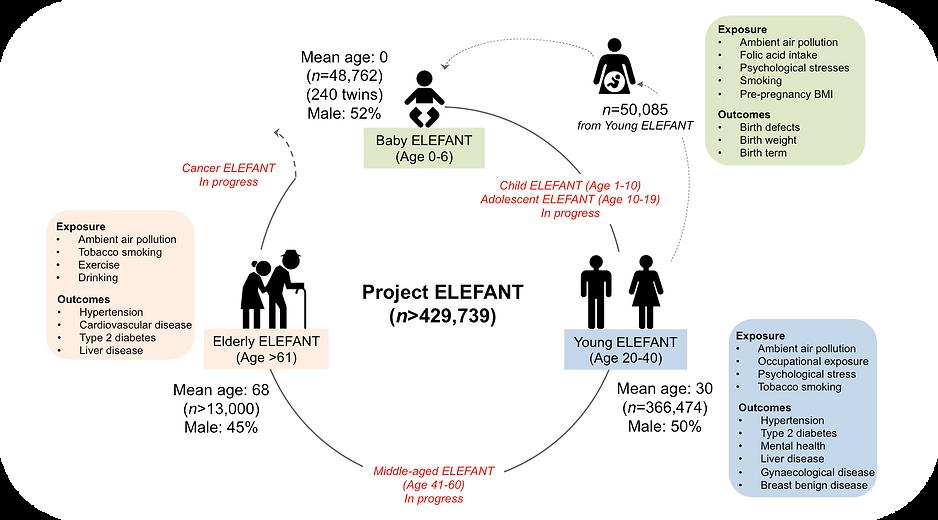 ELEFANT overview.png