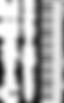 White-MNW-Logo-VERTICAL-Medium-e15142038