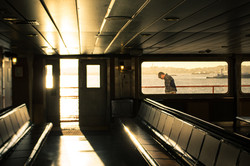 Ferry Rays
