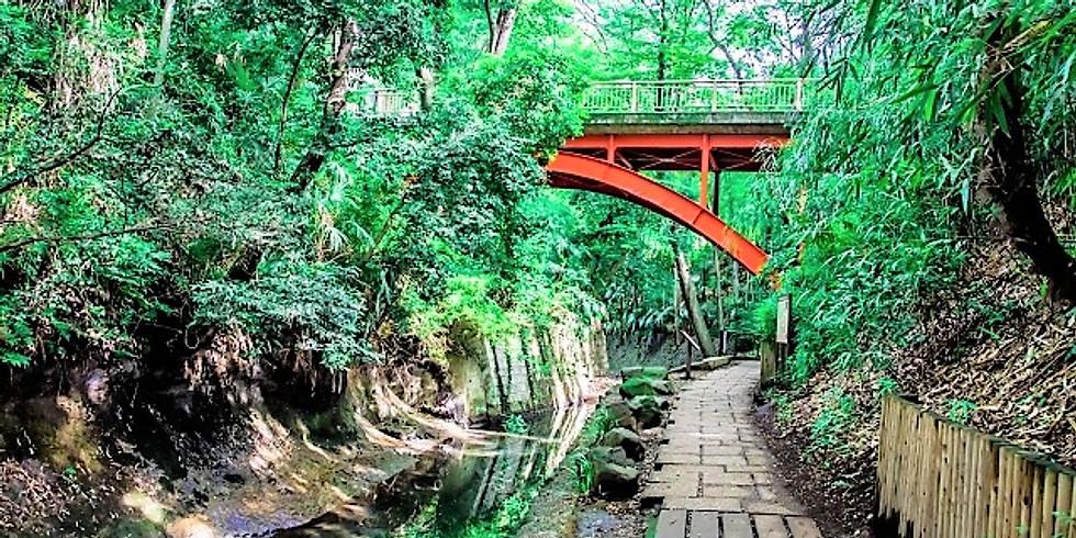 【20th July】Photo Walk at Todoroki Valley - 等々力渓谷