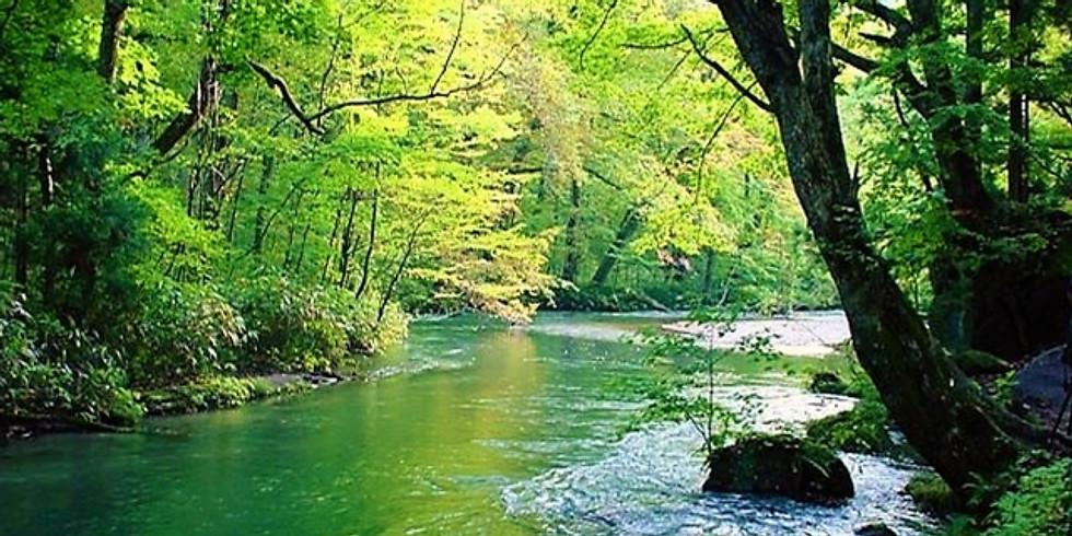 【2nd September】Summer Hiking at Akigawa Valley - 秋川渓谷ハイキング
