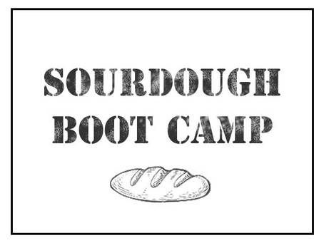 A Sourdough Boot Camp