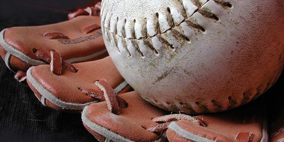 Baseball che passione!
