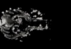 #Worldwide #Nationwide #Joubin #Mahmoudi #JoubinMahmoudi #JoubinDrums #Drummer #Drummers #PersianDrummer #IranianDrummer #Metal #HeavyMetal #HardRock #DrummersLife #Drums #USA #Awarded #Certified #Drumming #California #LosAngeles #SanFrancisco #NewYorkCity #NYC #DC #SanDiego #CA #LA #Tehran #Iran #DrummersWorld #WashingtonDC #Persian #Music #Rock #Metal #USDrummer #Fusion #Pop #Jazz #SymphonicMetal #Gothic #GothicMetal #Movie #Cinema #Funk #Album #FeaturedArtist #JoubinProductions #Production #Professional #ProDrummer #IranianDrummer #PersianDrummer #DaevaImmortals #Daeva #Immortals #Immortal #Immortality #MazdaShahani