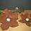 Thumbnail: Seerose Rost klein