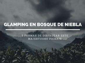5 actividades que no pueden faltar si visitas un Glamping en un bosque de niebla