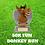 Thumbnail: 50K FUN DONKEY RUN!