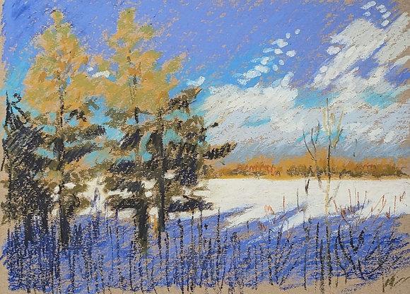 Winter lake 2