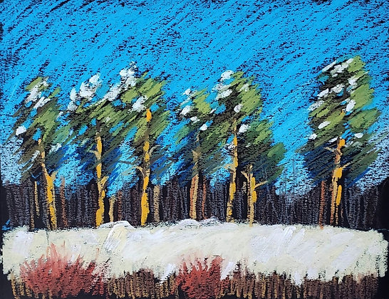 Winter pines