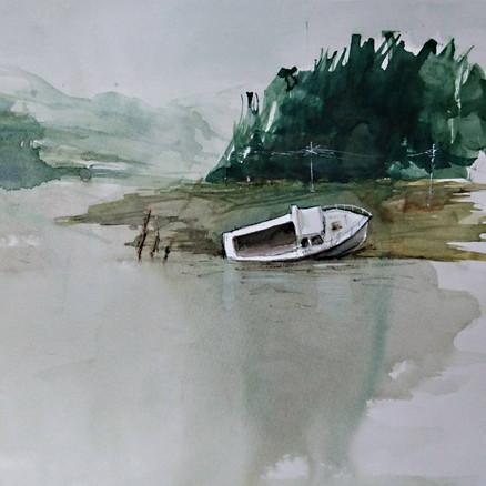 Boat 2017
