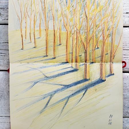 fall trees 4