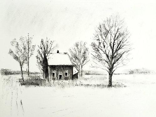 Abundant house