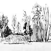 Ink trees 1