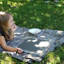 Art picnic