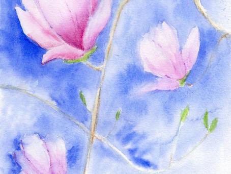 Watercolor Magnolia Workshop