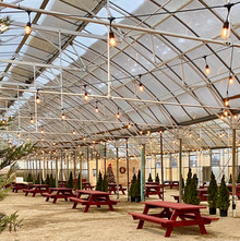 the greenhouse at lookout farm 02.jpg