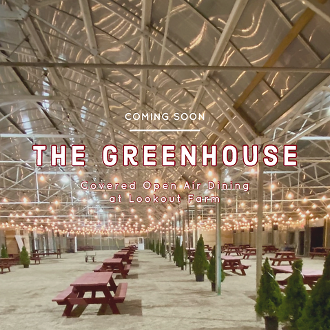 the greenhouse coming soon.PNG