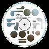 CD Flute Portrais.png