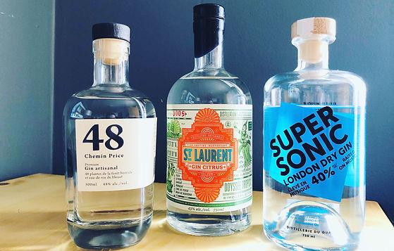 Les nouveaux gins québécois - PARTIE 1 - 48 Chemin Price, St. Laurent Citrus & SuperSonic