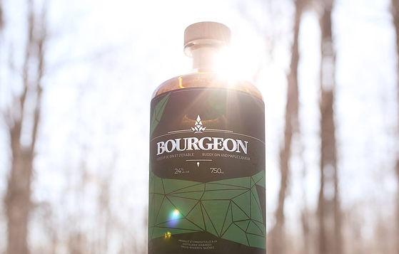Bourgeon: Liqueur de gin et d'érable - Ode au printemps d'ici