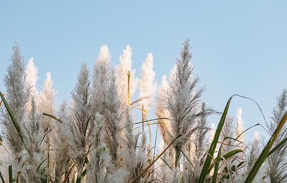 Les lancements beauté attendus en septembre - Un automne qui s'annonce sous le signe du renouveau