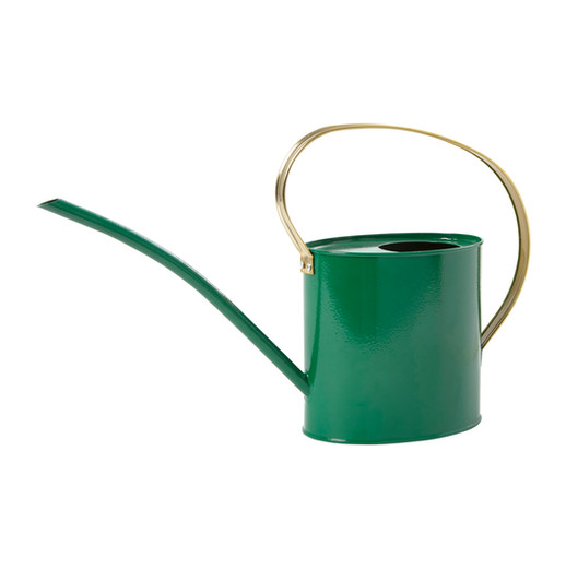 homesense-green-watering-can_9-99-highre