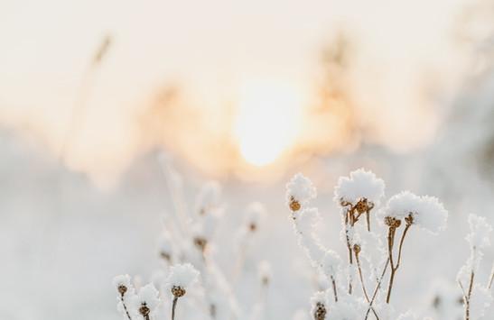 Beauté hivernale - Alliés bien-être et beauté pour la saison froide