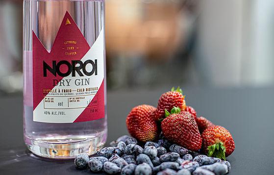 NOROI - Dry gin aux petits fruits du Québec - Un nouveau gin fruité tout en élégance
