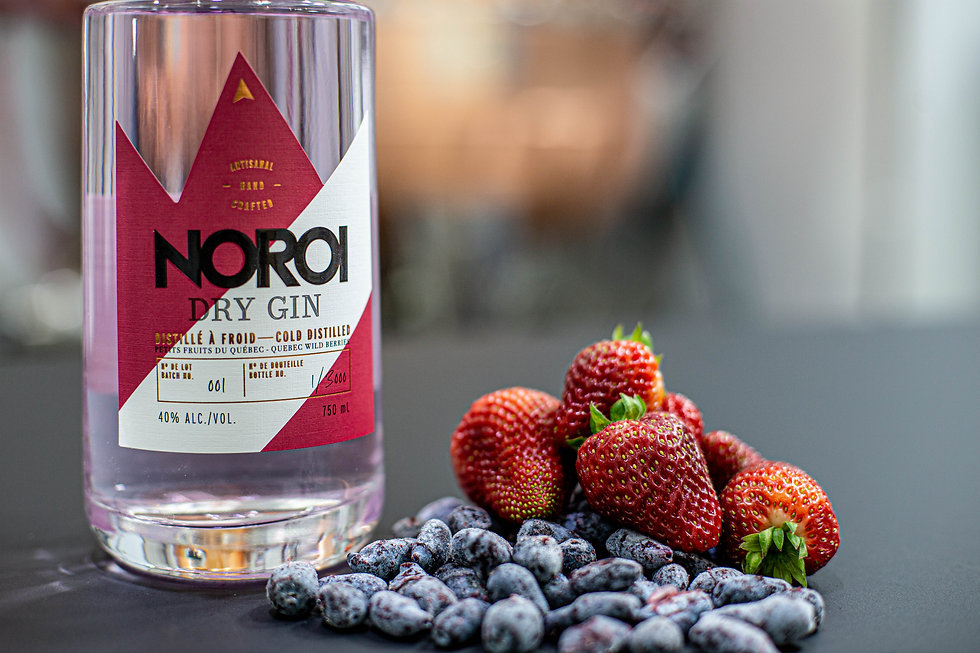 Noroi - Gin aux petits fruits