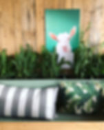Caprina_La chèvre souriante