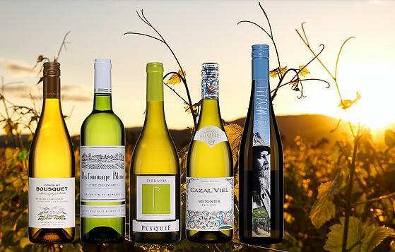 Magazine Saison X Sélections Oeno - 5 vins blancs à moins de 1,6 g de sucre