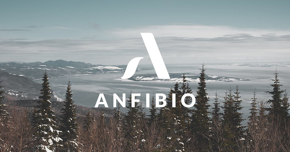 Anfibio a 50 ans - Des bottes québécoises, pour les hivers d'ici