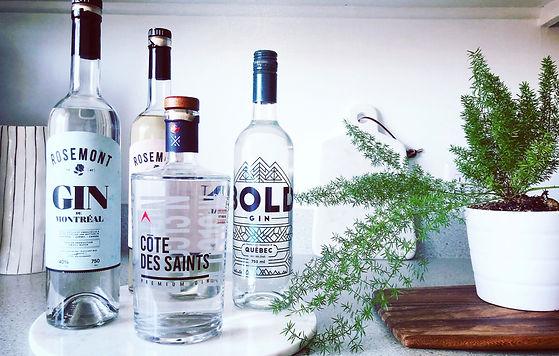 4 nouveaux gins locaux à découvrir - Incursion dans 4 univers gin bien distincts