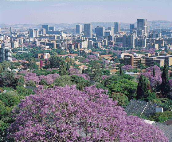 South Africa Announces $26 Billion Economic Stimulus In Response To Coronavirus Pandemic